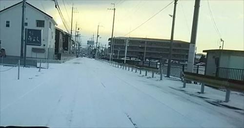 2018.01.25雪.jpg